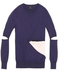 Pinko Pullover - Violet