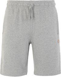 Dickies Bermuda Shorts - Grey