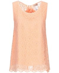 SCEE by TWINSET Top - Rosa