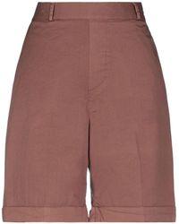 TRUE NYC Shorts & Bermuda Shorts - Brown