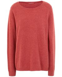Purotatto Sweater - Red