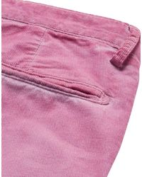 Massimo Alba Shorts & Bermuda Shorts - Purple