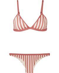 Haight Bikini - Multicolour