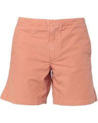 Bellerose Shorts & Bermudashorts - Pink