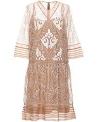 INTROPIA Knee-length Dress - Pink