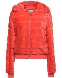 Relish Teddy Coat - Orange