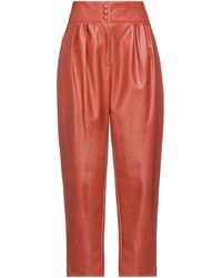 ViCOLO Hose - Orange