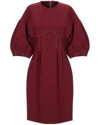 WEILI ZHENG - Knee-length Dress - Lyst