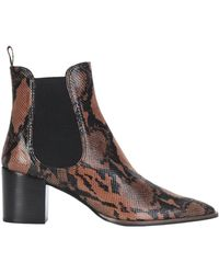 Roberto Festa Ankle Boots - Brown