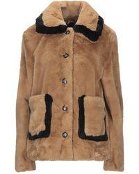 Goosecraft Teddy Coat - Brown