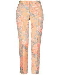PT01 Casual Trouser - Multicolour