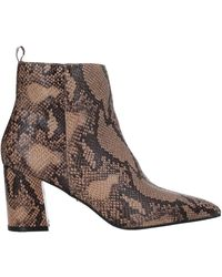 KG by Kurt Geiger Ankle Boots - Brown