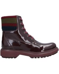Geox Ankle Boots - Brown