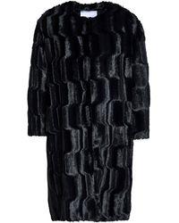 Ainea Faux Fur Coat Black