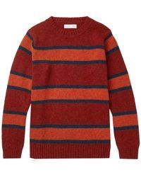 Several Sweater - Orange