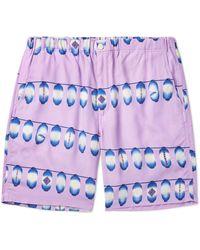 Flagstuff Shorts & Bermuda Shorts - Multicolour