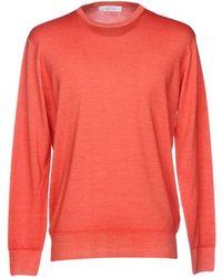 Cruciani Sweater - Red