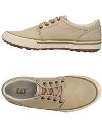 Caterpillar Sneakers & Tennis basses - Neutre