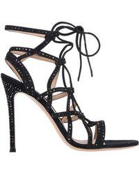 Gianvito Rossi Sandals - Black