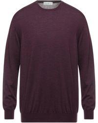 Della Ciana Sweater - Purple