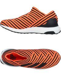 adidas - Low-tops & Sneakers - Lyst