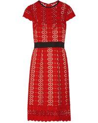 Catherine Deane Midi Dress - Red