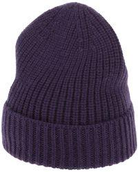 Cruciani Hat - Purple