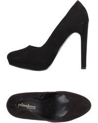Primadonna Court - Black