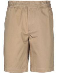 Tommy Hilfiger Shorts & Bermuda Shorts - Natural