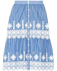 Miguelina 3/4 Length Skirt - Blue