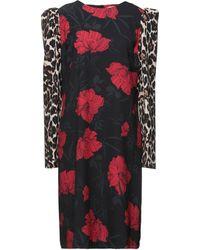 Lafty Lie Midi Dress - Black