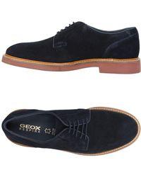 Geox Stringate - Blu