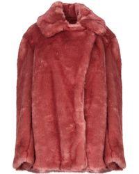 Dondup Faux Fur - Pink