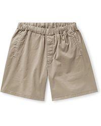Barbour Bermuda Shorts - Natural