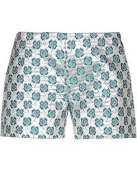 Giamba Shorts - Metallic