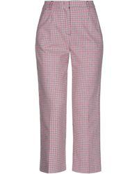 Pinko Pantalon - Violet