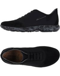 Geox Low-tops & Trainers - Black