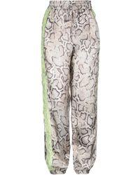 Pinko Pantalones - Gris