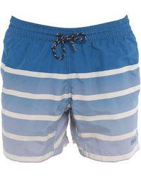 Barts Swim Trunks - Blue