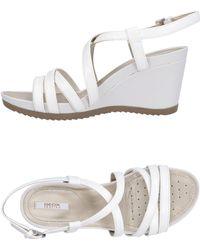 Geox Sandals - White