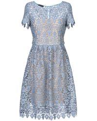 Emporio Armani Blue Guipure Lace Dress