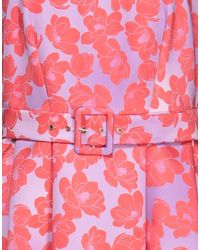 Closet Midi Dress - Purple
