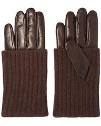 Portolano Gloves - Brown