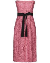 BROGNANO Midi Dress - Pink