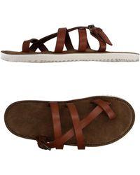 Buttero Toe Strap Sandal - Brown