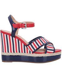 Geox Sandals - Blue