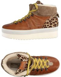 Soya Fish High Sneakers & Tennisschuhe - Braun