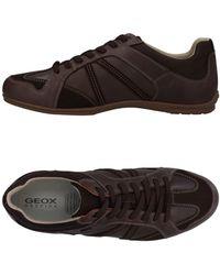 Geox Sneakers & Deportivas - Marrón