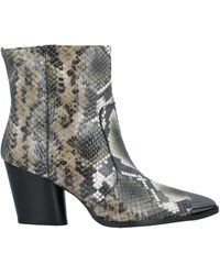 Jeannot Ankle Boots - Multicolor