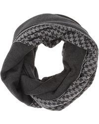 Armani Collar - Grey